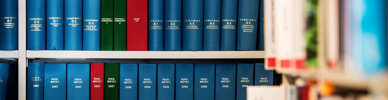 Rikslagsböcker