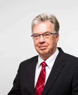 Andra vicetalman Bert Häggblom
